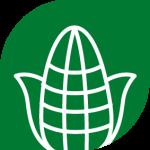 icon-corn